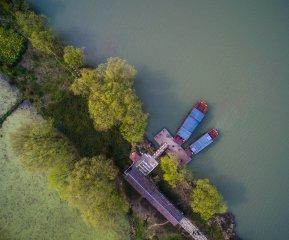 太湖生態濕地春意濃