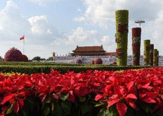 中國一批新規9月1日起施行 辦理手機入網須實名