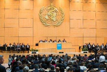 """中國啟動聯合國17個""""可持續發展目標""""推廣活動"""