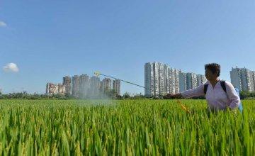 中國第二批國家新型城鎮化綜合試點即將公佈