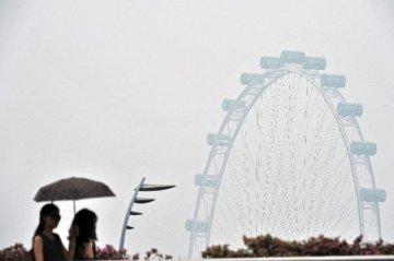 财经观察:中国经济转型为中新合作带来新机遇