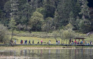 專家指出,我國森林旅遊與健康產業要攜手發展