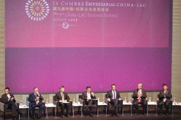 专访:中国成为支持拉美经济稳定发展的重要力量--访美洲开发银行副行长梅拉