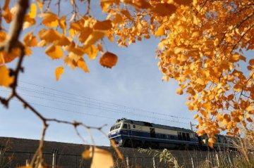 甘肅:鐵路貨運量下降 用電量增速回落