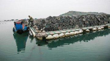 中國-東盟海產品交易所對外公開掛牌交易