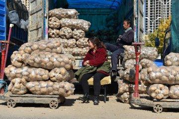 綜述:巴西穩定農產品價格經驗值得借鑒