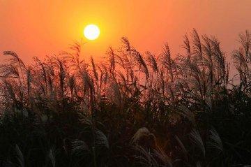 前三季度天津民營經濟完成增加值增13.9%
