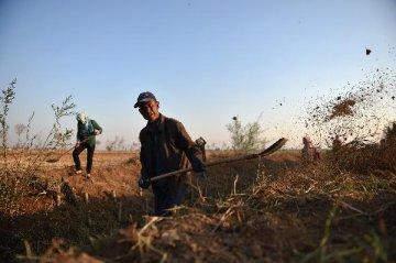 李克強:加快完善水利基礎設施網路 確保農民長期受益