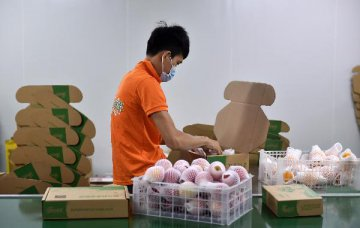 10月中国物流业景气指数为53.5% 保持稳健发展态势