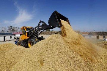 """""""十二五""""期間中央安排農業基建投資超萬億元"""