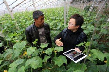 陳錫文:正積極研究農村新型合作金融具體方案