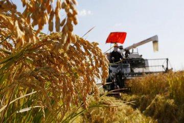 韓長賦談《中共中央 國務院關於進一步推進農墾改革發展的意見》