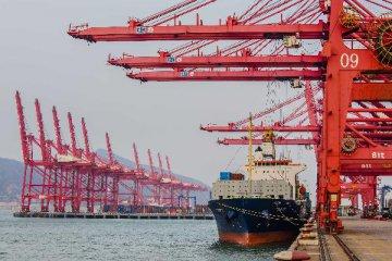 黄颂平:2015进出口双降主要受大宗商品大幅下跌影响