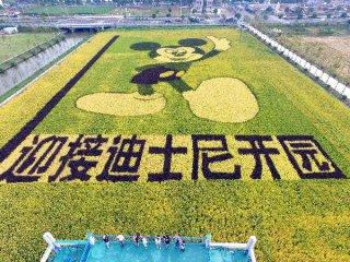 上海迪士尼票價方案確定 3月28日起發售