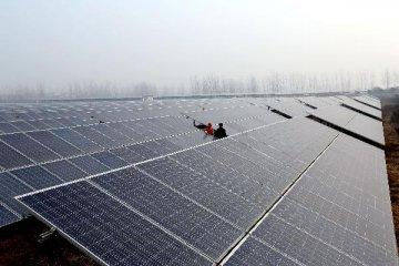 能源局:中國成全球光伏發電裝機容量最大國家
