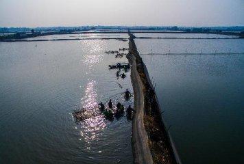 """浙江:""""十三五""""时期做大做强远洋渔业产业"""