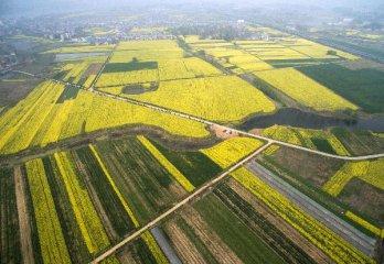 桂台两地加强现代农业合作