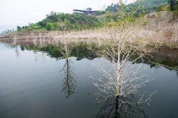 水利部:長江流域可能發生大洪水 加快防汛建設