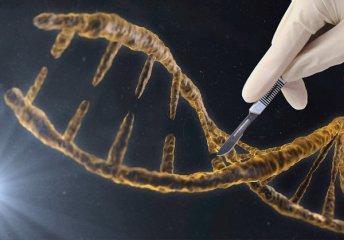 美国龙头企业接连上市 基因测序产业望掀热潮