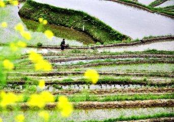 國家農業可持續發展試驗示範區建設方案獲審議通過