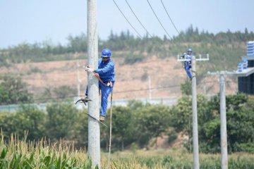 13省份電改集中落地 新能源消納仍待破局