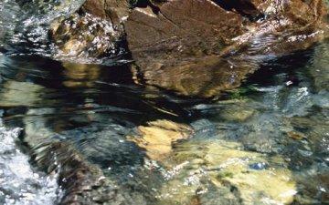 國家下達重點流域水污染防治2016中央預算內投資計畫