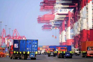 海关:1月进出口总值同比增19.6% 出口增15.9%