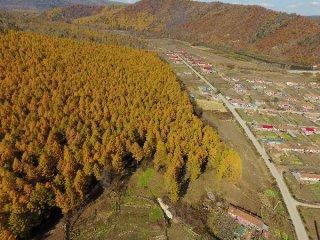 农林业PPP试点将破冰 PPP项目资产证券化全面提速