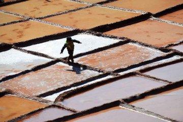 盐业政企分离年底前完成 产业链整合拉开序幕