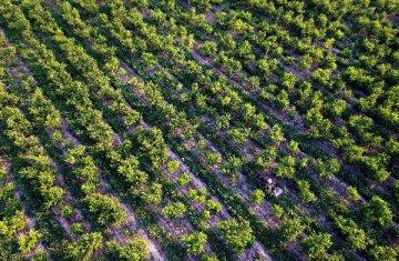 农业部发文促农药产业健康发展 支持企业兼并重组
