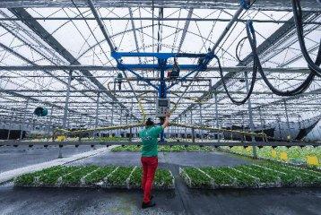 """中国加强与东盟农业合作 跨越空间限制促进""""良性循环"""""""