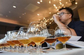 行業觸底回升 啤酒行業消費結構升級提速