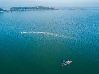 53家公司預計前三季度業績增長 海康威視淨利超55億元
