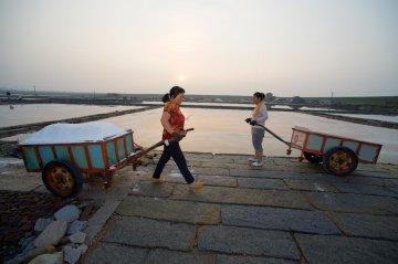 福建泉州:百年盐场的繁忙伏收季