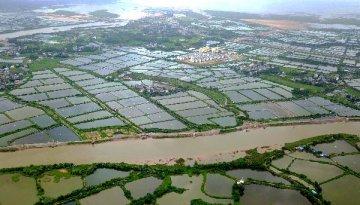 農村集體產權改革試點明年擴圍 北京浙江等望進行整省試點