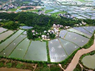 """""""三塊地""""改革試點將再添新措 促農業現代化發展"""