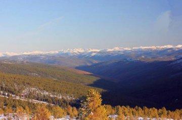 俄羅斯遠東林業投資建議:巨大資源潛力、需求增長、國家扶持