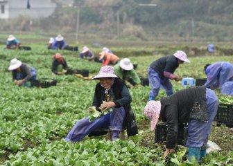 自然資源部推進農村土地制度改革三項試點工作