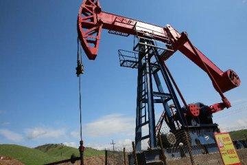 國際油價盤中衝破80美元關口