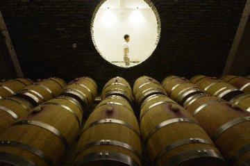 我国葡萄酒市场出现恢复性增长