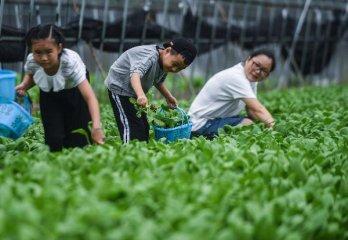 發改委、農業農村部介紹鄉村振興戰略遠景謀劃