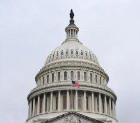 """美国迎来""""分裂""""国会 风险资产波动料加大"""