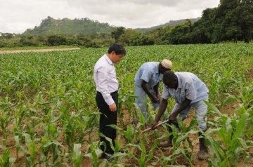 发展农业,摆脱石油诅咒