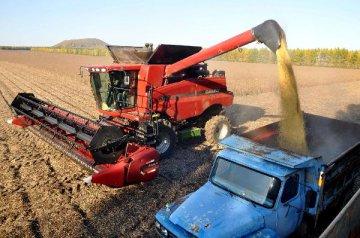 中国已订购200万吨美国大豆