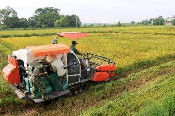 越南总理提出越南应成为前15大农业发达国家