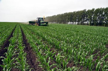中美貿易戰尚未結束,美國農民又開始種大豆了,想啥呢?