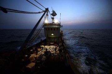 """【專題】英國""""脫歐""""之歐洲漁業糾葛"""
