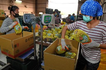 韩国瑜率团抵厦门 签下3000万美元农渔产品订单