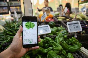 """[精選]手機買菜""""雞肋變香餑餑""""?巨頭湧入致規模擴張"""