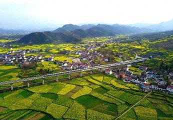 为什么说中国拉不动全球经济增长了?
